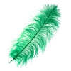 "Ostrich Wing Feathers 18-24"" Premium Quality 1/2 Lb Emerald"
